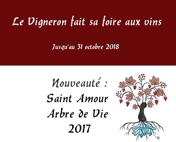 La foire aux vins en direct du vigneron Arnaud Briday Julienas