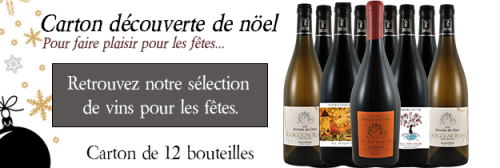 Cases by 12 bottles - Discovery wine-grower in Juliénas & Saint Amour & Moulin à Vent